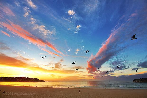 New   Life is Grace   title   www.sunrise.com
